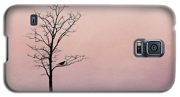 Lovebird Galaxy S5 Case - The Serenade by Tom Mc Nemar