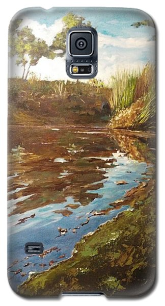The Seven Lakes Galaxy S5 Case