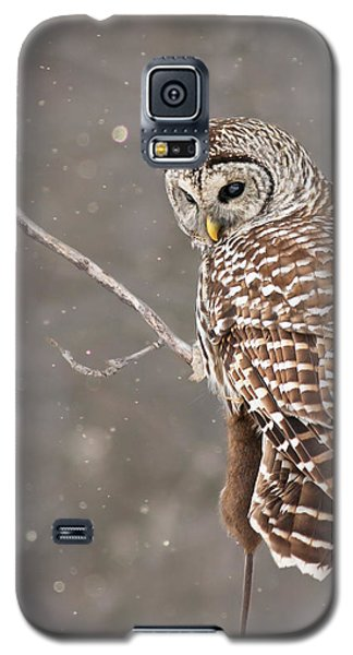 The Silent Hunter Galaxy S5 Case