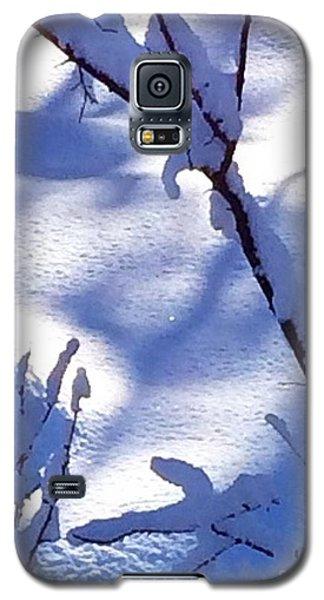 The Single Diamond Galaxy S5 Case by Jennifer Lake