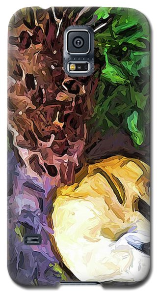 The Sleeping Cat And The Dead Tree Fern Galaxy S5 Case