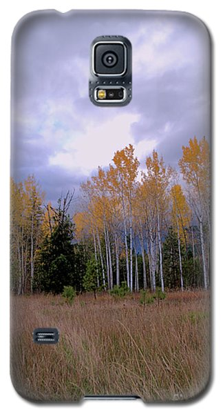 The  Song Of The Aspens 2 Galaxy S5 Case by Victor K