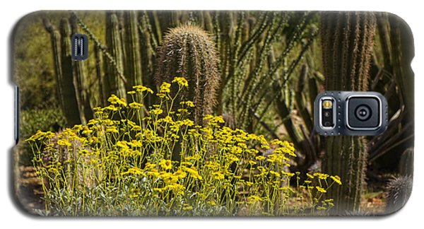 The Song Of The Sonoran Desert Galaxy S5 Case