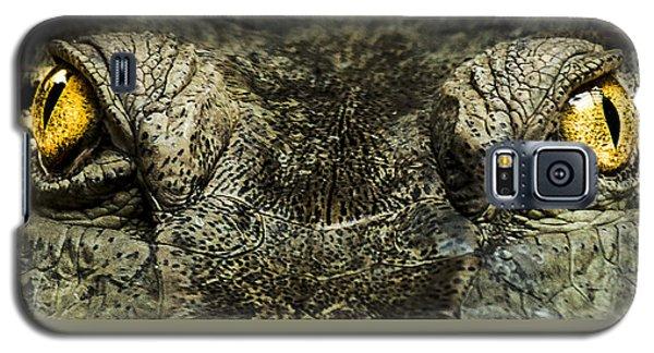 The Soul Searcher Galaxy S5 Case by Paul Neville