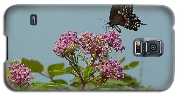 Galaxy S5 Case featuring the photograph The Spicebush Swallowtail Of Prettyboy Reservoir by Donald C Morgan