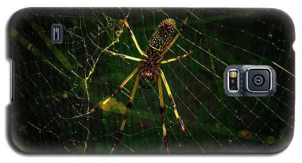 The Spider Galaxy S5 Case