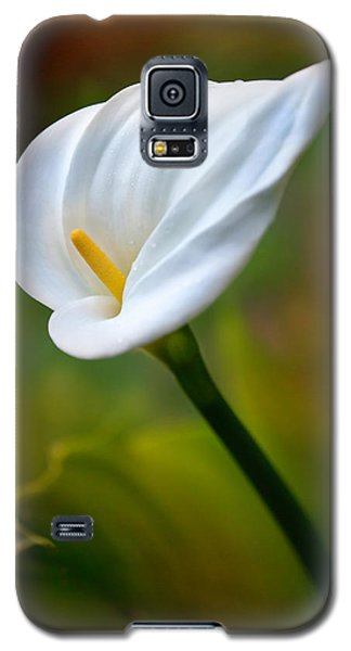 Galaxy S5 Case featuring the photograph The Spirit Of Ecstasy by Marion Cullen