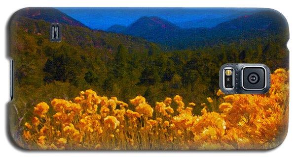 The Spring Mountains Galaxy S5 Case