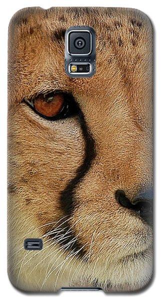The Stare Galaxy S5 Case