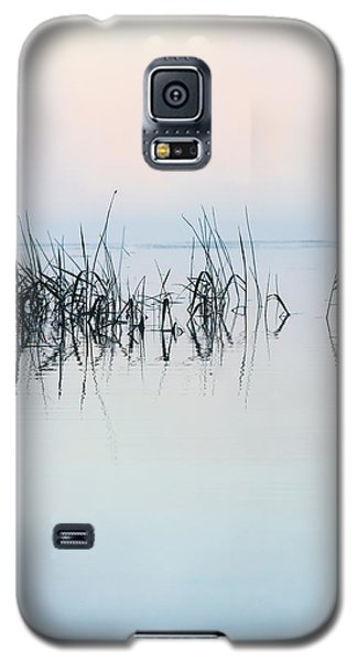 The Stillness Of Life Galaxy S5 Case by Shelby  Young
