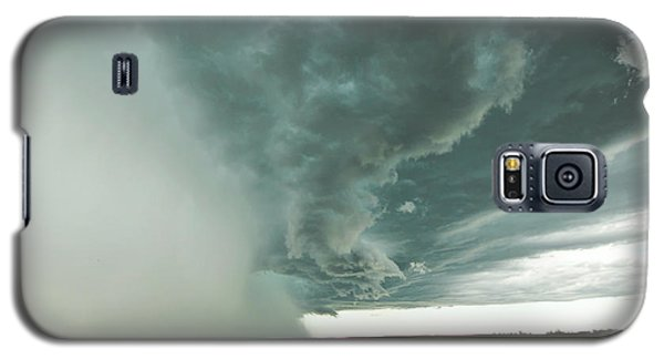 The Stoneham Shelf Galaxy S5 Case