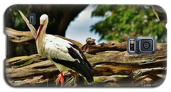 Galaxy S5 Case featuring the photograph The Stork by Craig Wood
