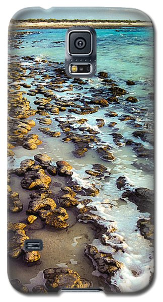 The Stromatolite Family Enjoying Its 1277500000000th Sunset Galaxy S5 Case