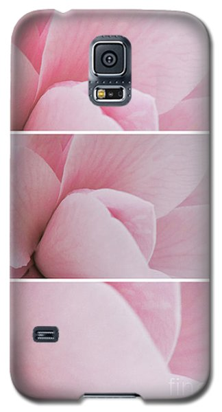 Galaxy S5 Case featuring the photograph The Sum Of The Parts by Linda Lees