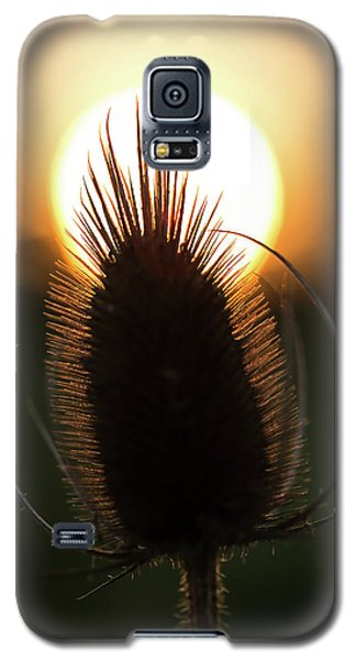Galaxy S5 Case featuring the photograph The Sun Sets Upon Summer by Dale Kincaid