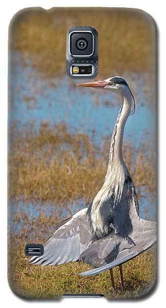 The Sunbather Galaxy S5 Case