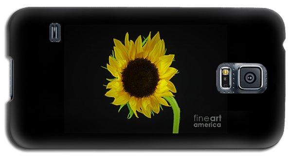 The Sunflower Galaxy S5 Case