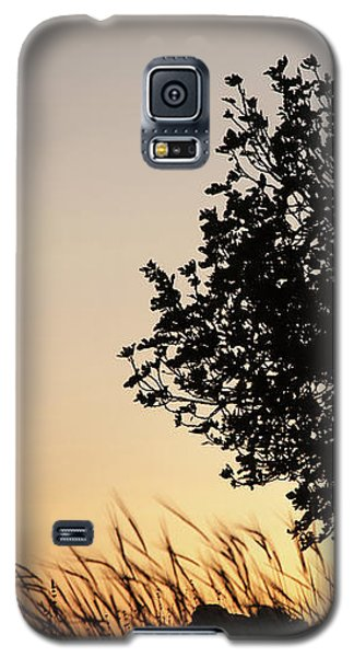 Sunset On The Hill Galaxy S5 Case by Yoel Koskas