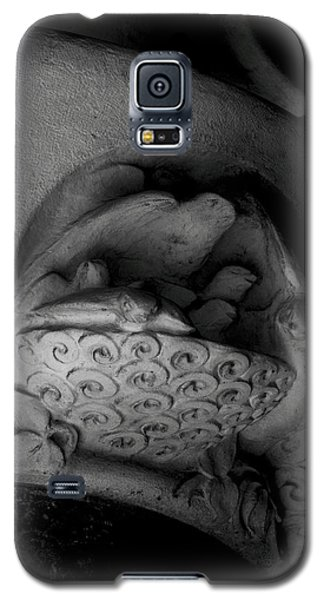 Decorative Galaxy S5 Case - The Swallows by Emme Pons