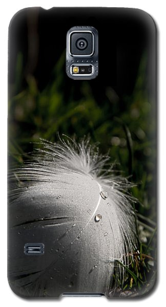 The Swans Are Back Galaxy S5 Case by Odd Jeppesen