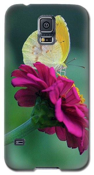 The Sweet Spot Galaxy S5 Case