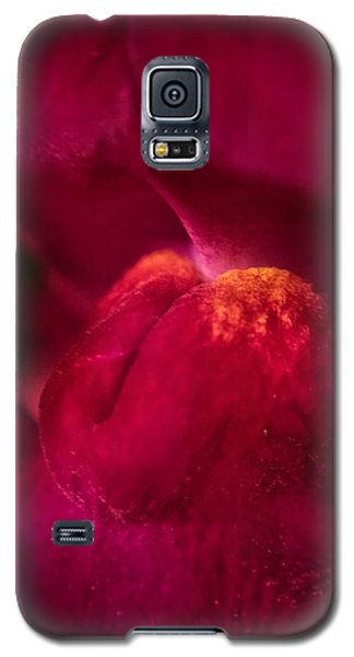The Taste Galaxy S5 Case