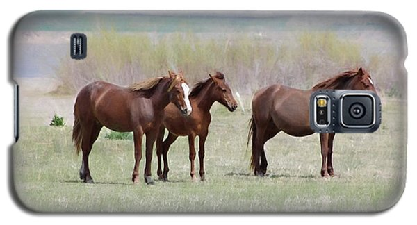 Galaxy S5 Case featuring the photograph The Three Amigos by Benanne Stiens