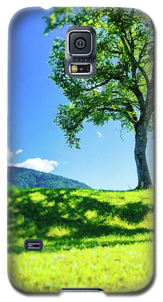 Galaxy S5 Case featuring the photograph The Tree On The Hill by Silvia Ganora