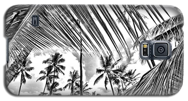 Galaxy S5 Case featuring the photograph The Tropics by DJ Florek