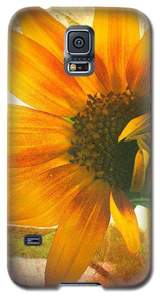 The Truth-teller Galaxy S5 Case by Tara Turner