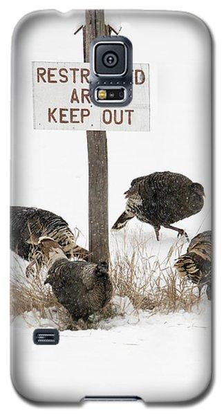 The Turkey Patrol Galaxy S5 Case by Mike Dawson