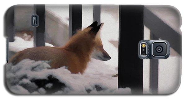Galaxy S5 Case featuring the digital art The Urban Fox by Ernie Echols