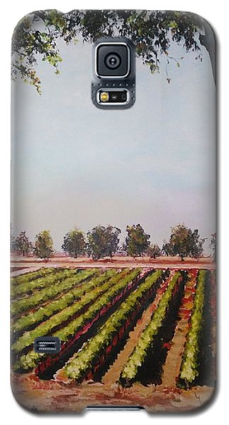 The Vineyard Galaxy S5 Case
