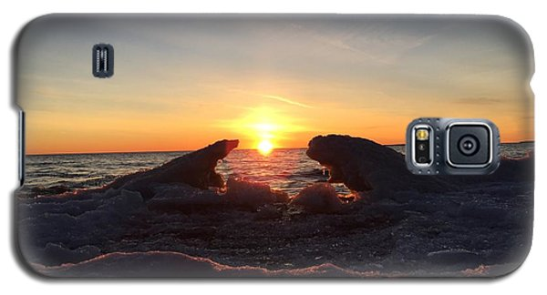 Galaxy S5 Case featuring the photograph The Walrus And The Bear by Paula Brown
