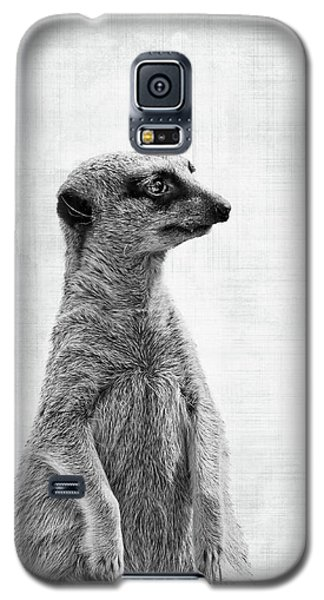 Meerkat Galaxy S5 Case - The Watcher by Delphimages Photo Creations
