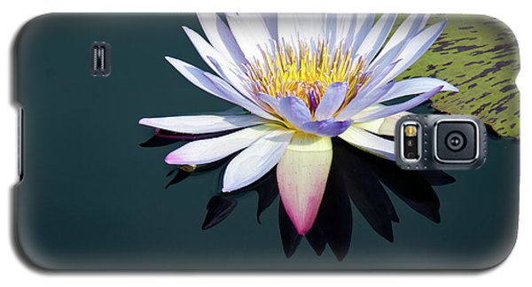 Galaxy S5 Case featuring the photograph The Water Lily by David Sutton