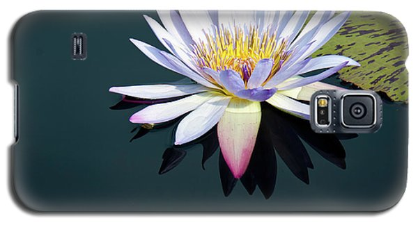 The Water Lily Galaxy S5 Case by David Sutton