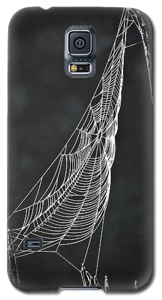 The Web Galaxy S5 Case by Tom Cameron