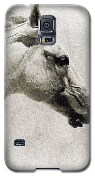 The White Horse IIi - Art Print Galaxy S5 Case