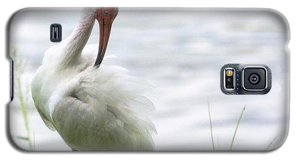The White Ibis  Galaxy S5 Case by Saija  Lehtonen