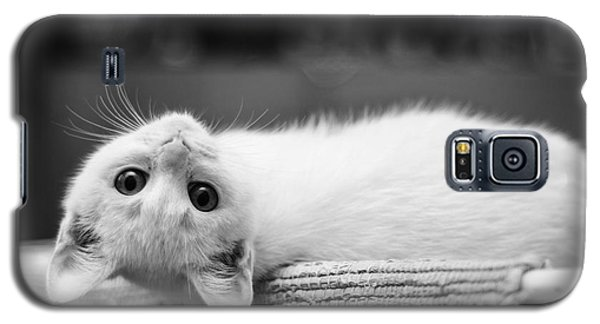 The White Kitten Galaxy S5 Case