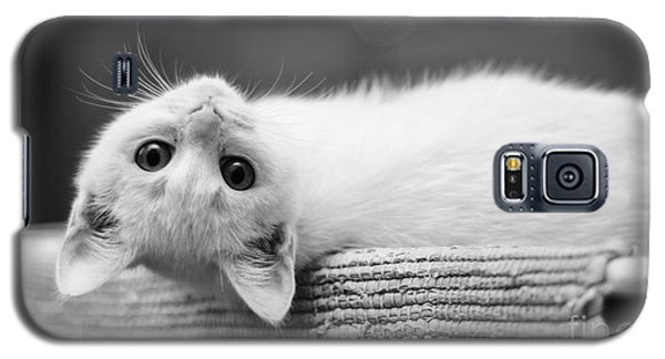 The White Kitten Galaxy S5 Case