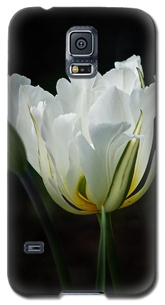 The White Tulip Galaxy S5 Case by Richard Cummings