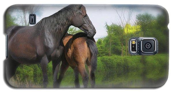 The Wild Horses Of La Chura Trail Galaxy S5 Case