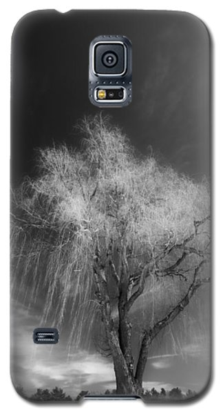 The Willow Galaxy S5 Case