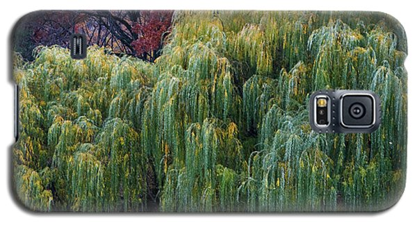 The Willows Of Central Park Galaxy S5 Case