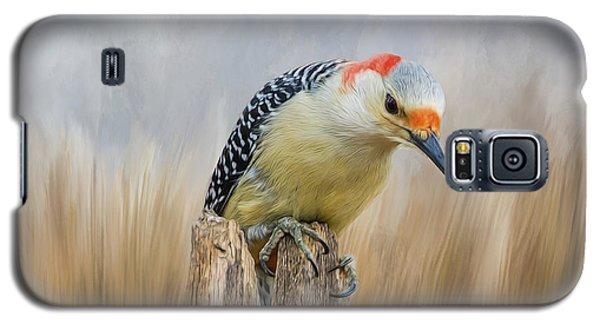 The Woodpecker Galaxy S5 Case