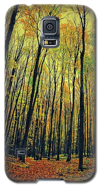 The Woods In The North Galaxy S5 Case by Michelle Calkins