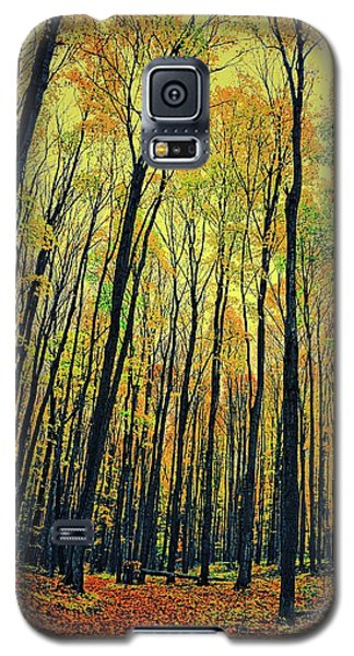 Galaxy S5 Case featuring the photograph The Woods In The North by Michelle Calkins