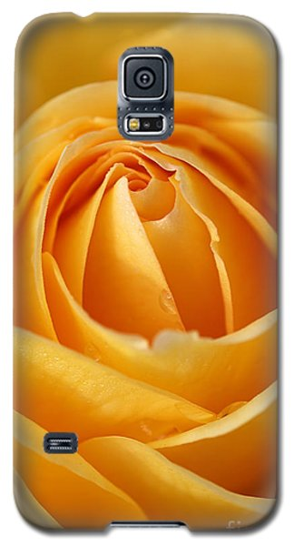 The Yellow Rose Galaxy S5 Case by Joy Watson